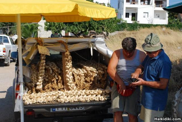garlic salesman on the farmer's market